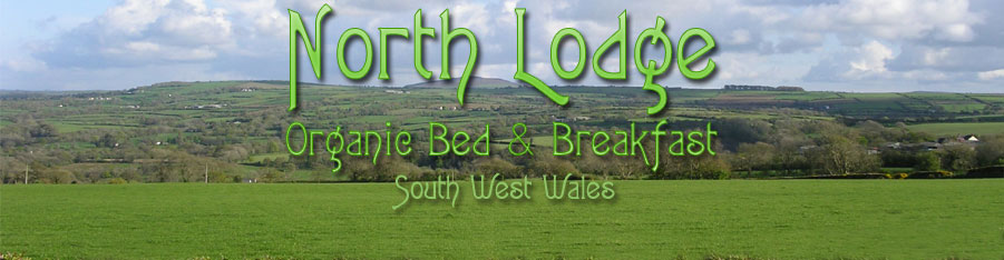 Northlodge Organic Bed and Breakfast